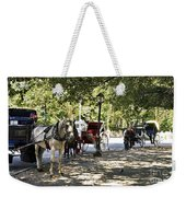 Rest Stop - Central Park Weekender Tote Bag