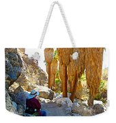 Rest Stop In Andreas Canyon Trail In Indian Canyons-ca Weekender Tote Bag
