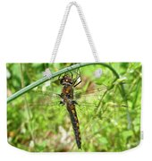 Resting Brown Dragonfly Weekender Tote Bag