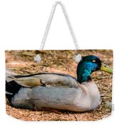 Resting Mallard Weekender Tote Bag