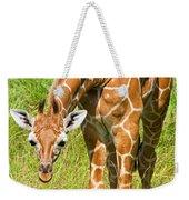 Reticulated Giraffe 6 Week Old Calf Weekender Tote Bag