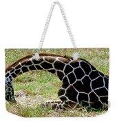 Reticulated Giraffe On Ground Weekender Tote Bag