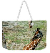 Reticulated Giraffe With Calf Weekender Tote Bag