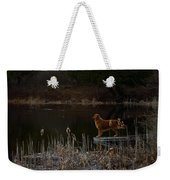 Retriever Focus Weekender Tote Bag