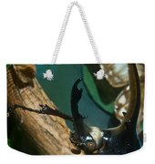 Rhinoseros Beetle Up Close And Personal Weekender Tote Bag
