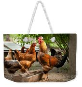 Rhode Island Red Chickens And Wooden Feeder  Weekender Tote Bag