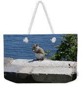 Rhode Island Squirrel Weekender Tote Bag
