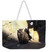 Rhodes Cat Trio Weekender Tote Bag