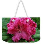 Rhododendron ' Bessie Howells ' Weekender Tote Bag
