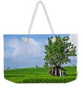 Rice Fields Weekender Tote Bag by Nila Newsom