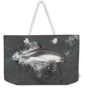 Riding The Bow Weekender Tote Bag