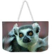 Ring Tailed Lemur-2 Weekender Tote Bag