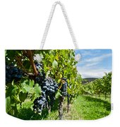 Ripe Grapes Right Before Harvest In The Summer Sun Weekender Tote Bag