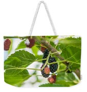 Ripe Mulberry On The Branches Weekender Tote Bag