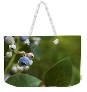 Ripening Blueberries Weekender Tote Bag