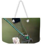 River Damselfly  Weekender Tote Bag