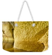 River Sculptured Marble Reflected On Water Surface Weekender Tote Bag