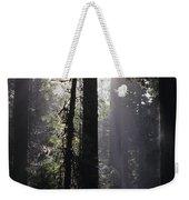 Road Through Redwoods Weekender Tote Bag