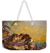 Roasted Steak In Traditional Kotlovina Dish Weekender Tote Bag