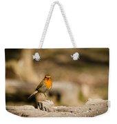 Robin At Feeder Weekender Tote Bag