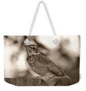 Robin Bird Black And White Weekender Tote Bag