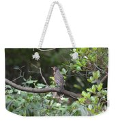 Robin In The Brush Weekender Tote Bag