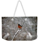 Robin In Winter Weekender Tote Bag