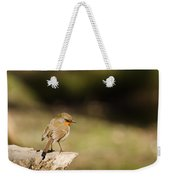 Robin On A Log Weekender Tote Bag