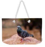 Rock Pigeon 030515 A Weekender Tote Bag