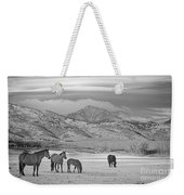Rocky Mountain Country Morning Bw Weekender Tote Bag