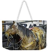 Rodeo Horse Two Weekender Tote Bag