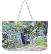 Roe Buck In Woodland Weekender Tote Bag