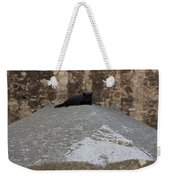 Rome Cat Weekender Tote Bag