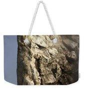 Roosevelt Geyser Weekender Tote Bag