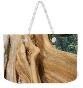 Root Of A Tree Nature Background Weekender Tote Bag