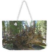 Roots Weekender Tote Bag by Barbara Snyder