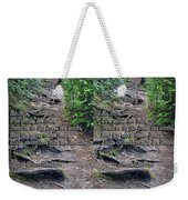 Roots - Cross Your Eyes And Focus On The Middle Image That Appears Weekender Tote Bag