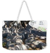 Roots Of Large Fig Tree Weekender Tote Bag