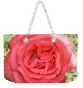 Rose At Clark Gardens Weekender Tote Bag