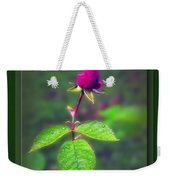 Rose Bud Weekender Tote Bag by Brian Wallace