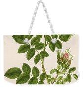 Rose Eglanteria Weekender Tote Bag