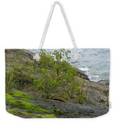 Rose Hip Bush Weekender Tote Bag