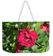 Rose On The Vine Weekender Tote Bag