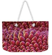 Rose Petal Surface Sem Weekender Tote Bag