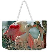Roseate Spoonbill Feeding Young At Nest Weekender Tote Bag