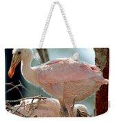 Roseate Spoonbill Nestlings Weekender Tote Bag