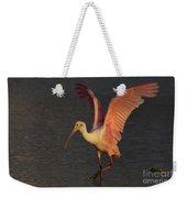 Roseate Spoonbill Photograph Weekender Tote Bag