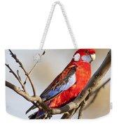 Crimson Rosella 1 - Australia Weekender Tote Bag