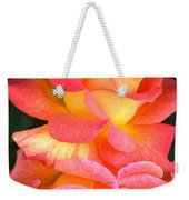 Roses Of Many Colors Weekender Tote Bag