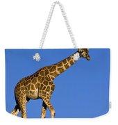 Rothschild Giraffe  Weekender Tote Bag